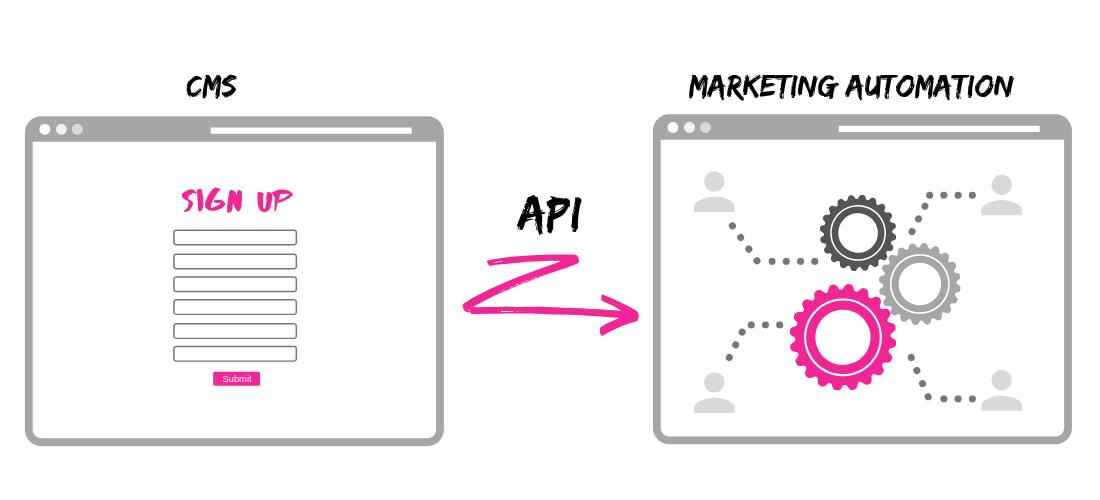 cms marketing automation api